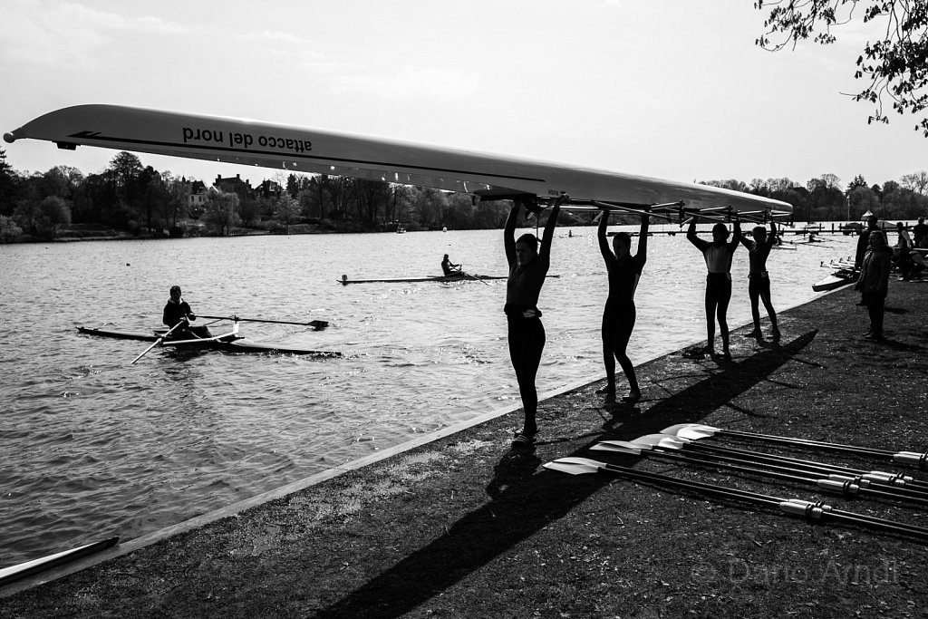 The Rowing Ballet